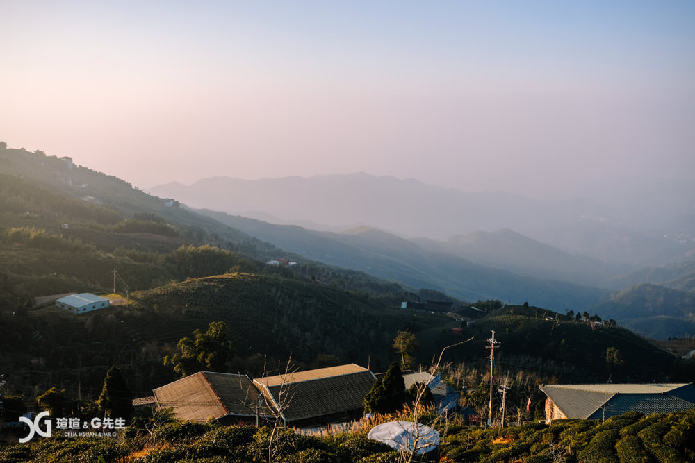 南投景點 鹿谷景點 南投一日遊 大崙山觀光茶園 大崙山觀景台
