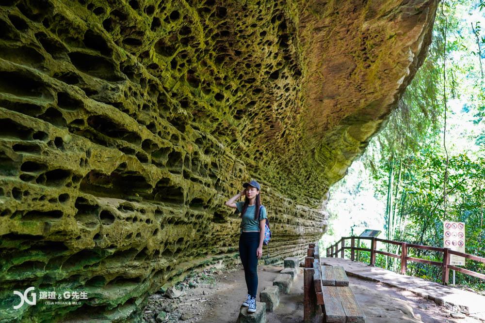 嘉義景點 嘉義旅遊 梅山景點 梅山旅遊 步道推薦 青年嶺步道 燕子崖 蝙蝠洞 嘉義瑞里