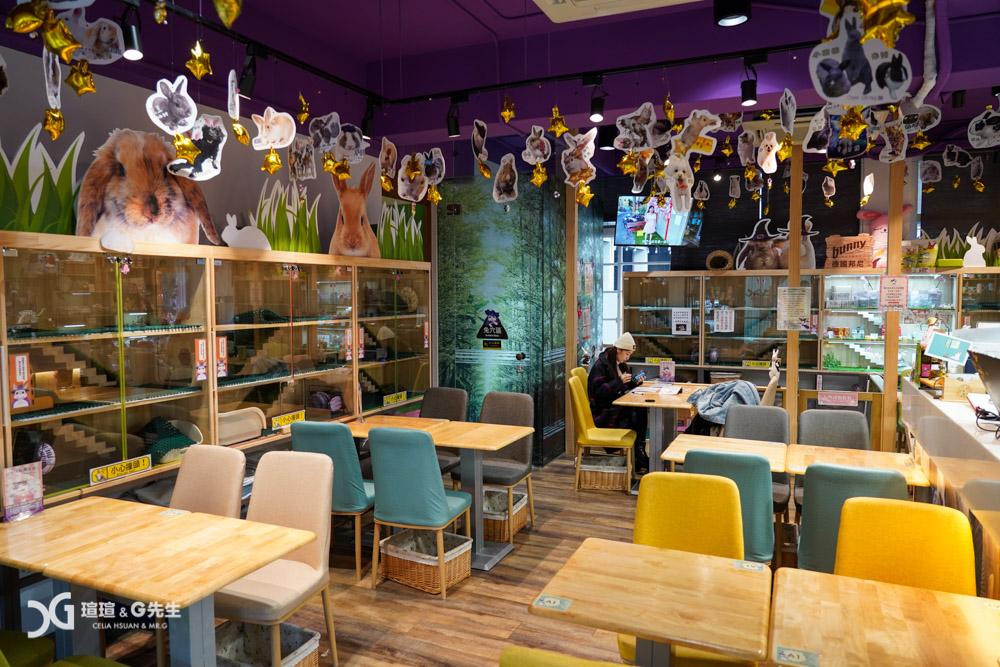 台中兔子寵物餐廳推薦 魔法兔兔