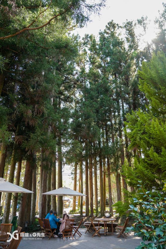 武陵農場露營區森林咖啡吧